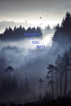 hidden in the mist
