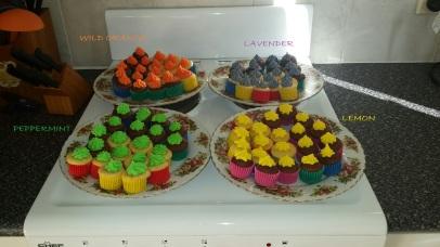 mini cupcakes iced