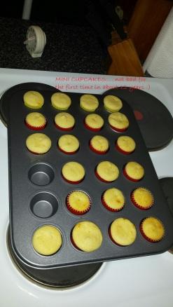 mini cupcakes uniced