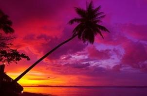 orange yellow red purple sunset