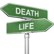 LifeOrDeath