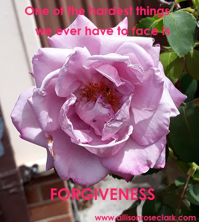 one of the hardest things we ever have to face is forgiveness_allisonroseclark