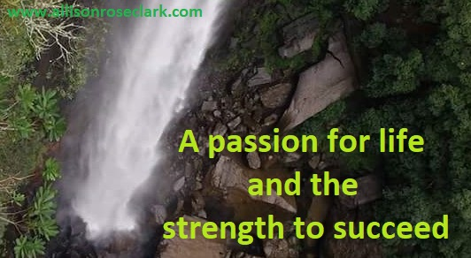 a passion for life and the strength to succeed_allisonroseclark