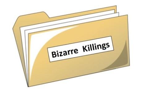 Bizarre Killings file