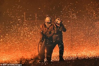 22897534-7844187-This_picture_taken_on_December_31_2019_shows_firefighters_strugg- Daily Mail